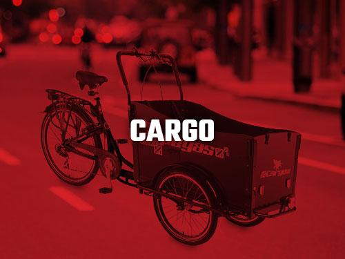 Biciclete Cargo Pegas