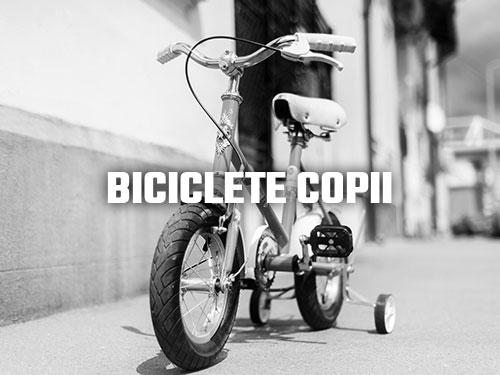 Biciclete Pegas Copii