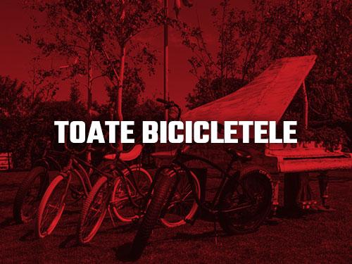 Biciclete Pegas